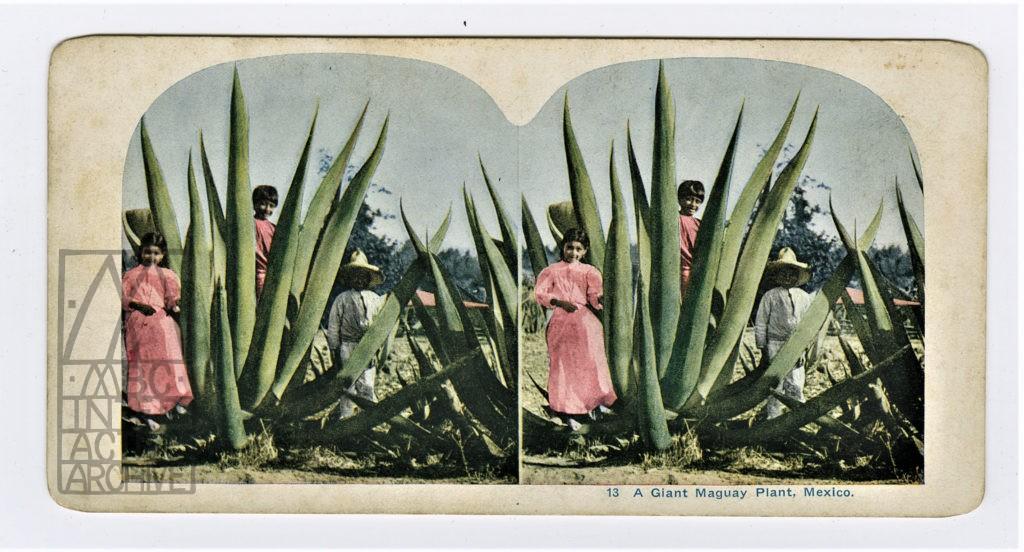 4 Charles Urban Mexican Domain, 1910.